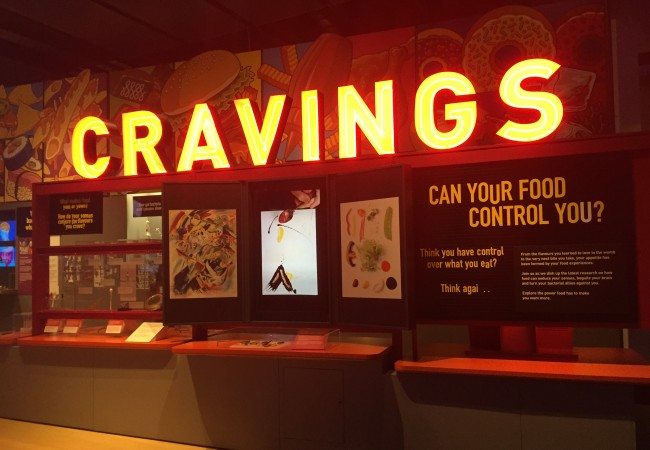 Food cravings, food addiction